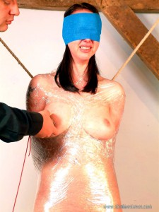 mousetrap-nipple-clamps-01